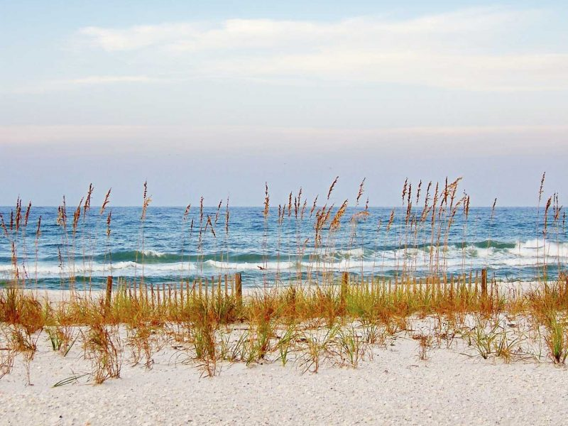 Relax amidst the beautiful sea oats